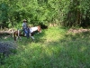 romeo-in-woods_0